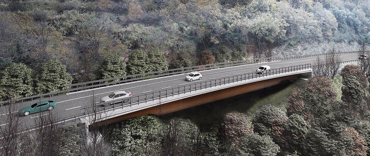 Progetto Viadotto A6 Madonna del Monte 3d